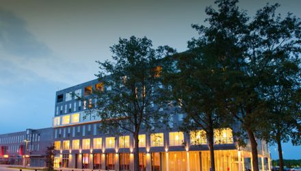 KookCadeau Zwolle Bluefinger